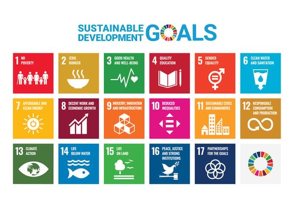 SDG Poster 17 Sustainable Development Goals